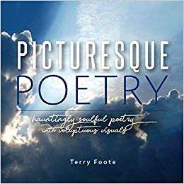 Local Author Spotlight: Terry Foote