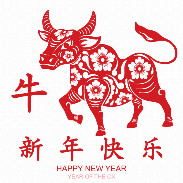 Adult Lunar New Year Craft Kits